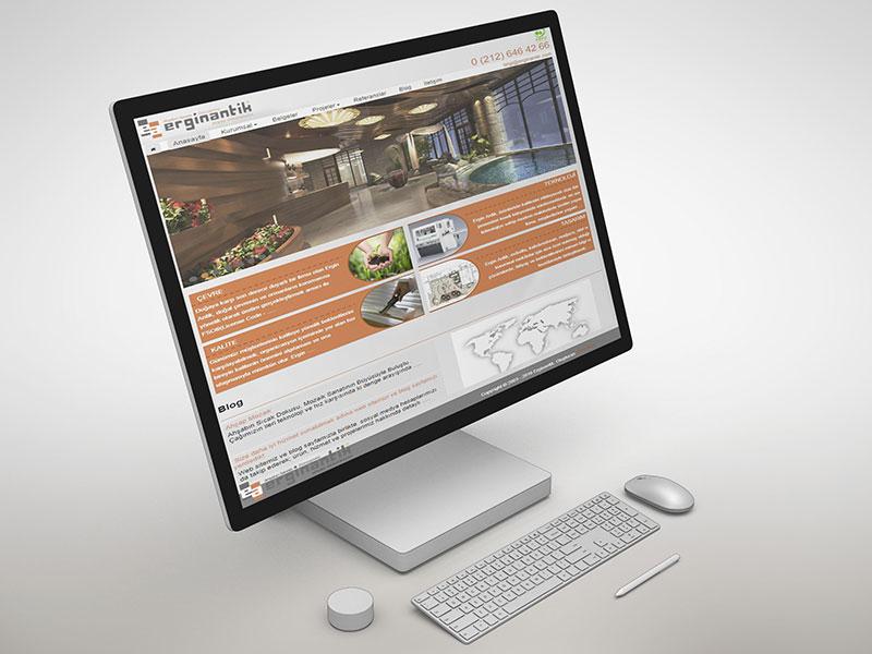 Erginantik Web Tasarım